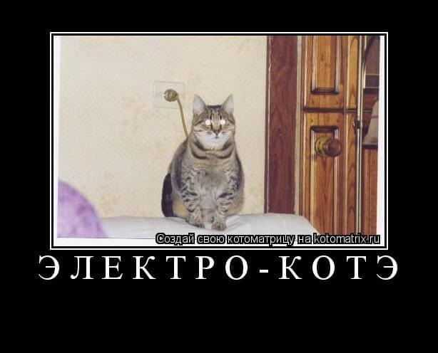 Прикольная картинка Электро-котэ